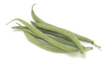 Cook's Thesaurus: Snap Beans