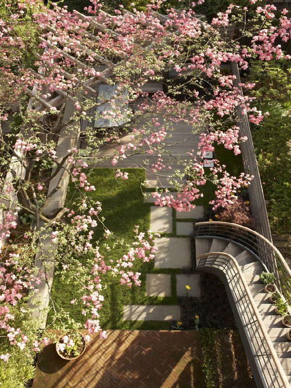 26 Best Brooklyn Backyard Images On Pinterest Balconies 640 x 480