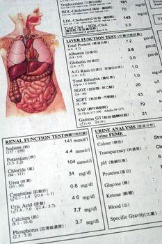 Potassium Deficiency Symptoms in Humans