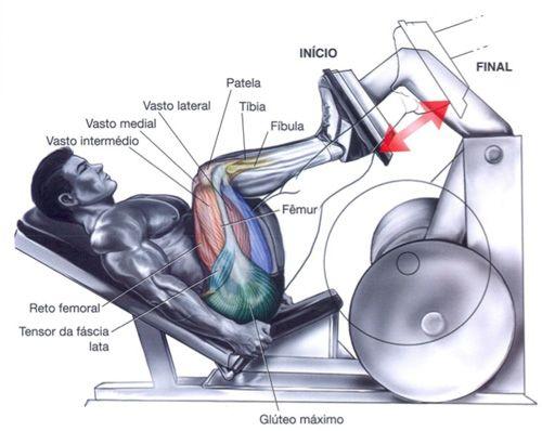 Leg Press - Se os pés pousarem na parte inferior da plataforma, trabalhará mais o quadríceps (A). Caso coloque os pés na parte superior da plataforma, enfatizará mais os glúteos e os músculos posteriores da coxa (B).