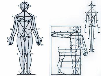 """Fritsch e il """"canone proporzionale scientifico del 1895 ha rivisitato quello di Schmidt del 1849, ha spostato la centralità della concezione del punto cardinale del corpo umano dalla testa alla colonna vertebrale. L'unico segmento del nostro corpo invariabile tanto per le persone alte che per quelle basse (32/33 vertebre)."""