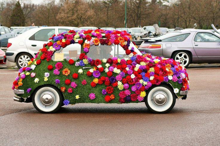 Fiat - natural