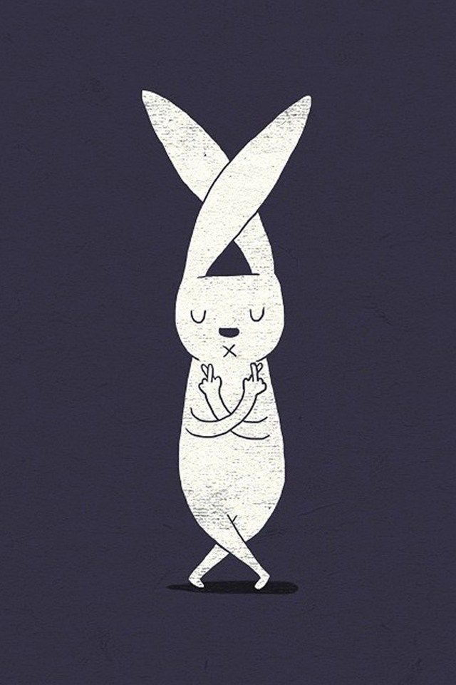 wall paper      rabbit