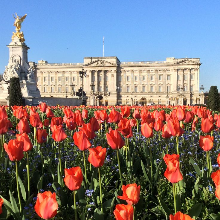 Spring at Buckingham Palace: