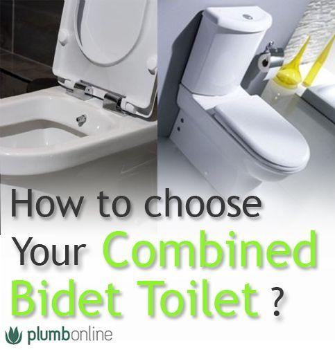 11 best combined bidet toilet images on pinterest bathroom toilets revolution and revolutions. Black Bedroom Furniture Sets. Home Design Ideas