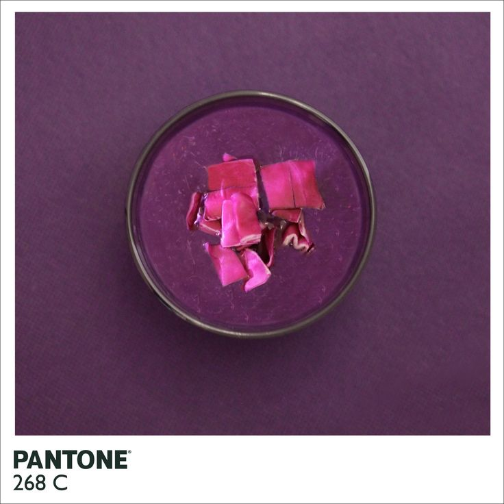 Pantone 268C, by Alison Anselot Photography (more PMS shots at the link)