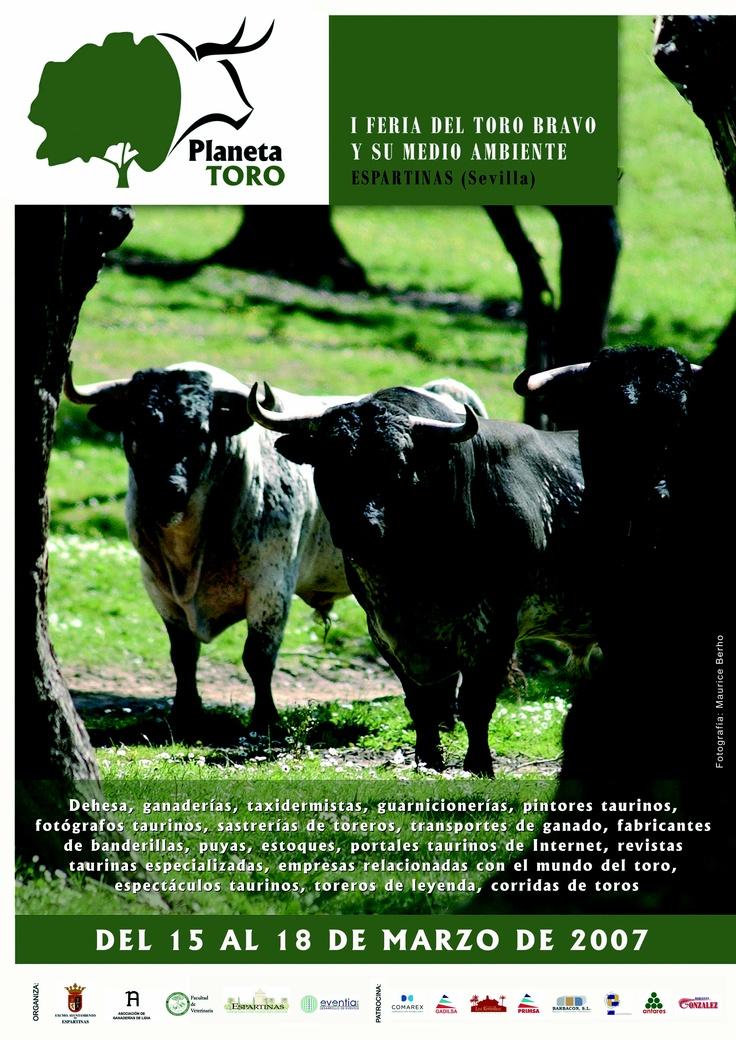 Diseño de la imagen corporativa de la I Feria del Toro Bravo y su Medio Ambiente. Más en http://www.lacaseta.com/ #Diseno #Design #ideas #Creatividad