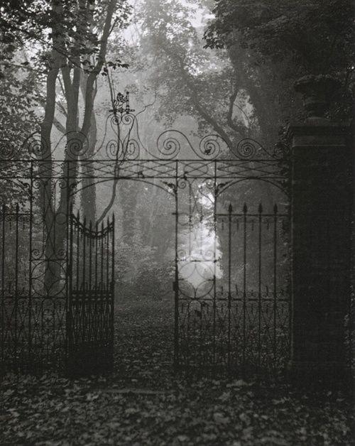 Edwin Smith (English, 1912-1971), Gates, Hardwich House Park, Bury St Edmunds, Suffolk, 1955