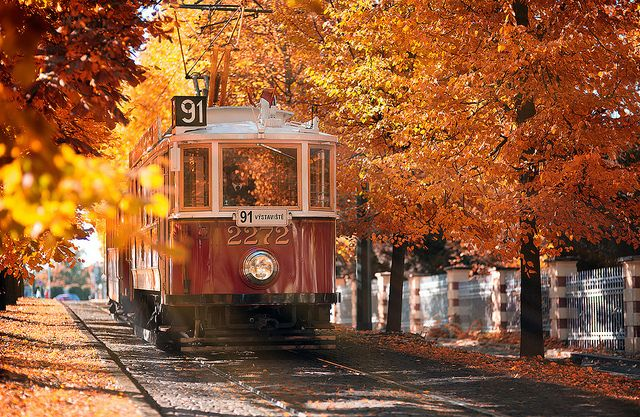 Autumn tram | Flickr - Photo Sharing!