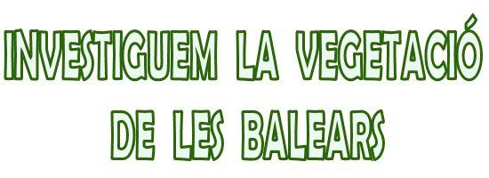 Webquest sobre la vegetació de les Balears