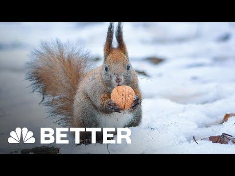 Winter Survival Guide For Your Home, Body, Car, And Bike | Better | NBC News