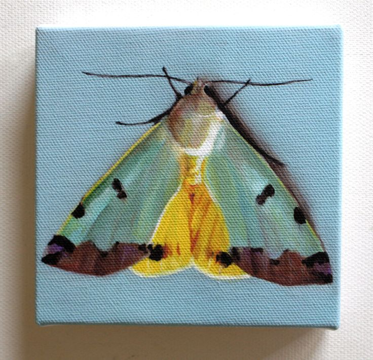 My little butterfly tiny canvas print animal small art painting fine art print