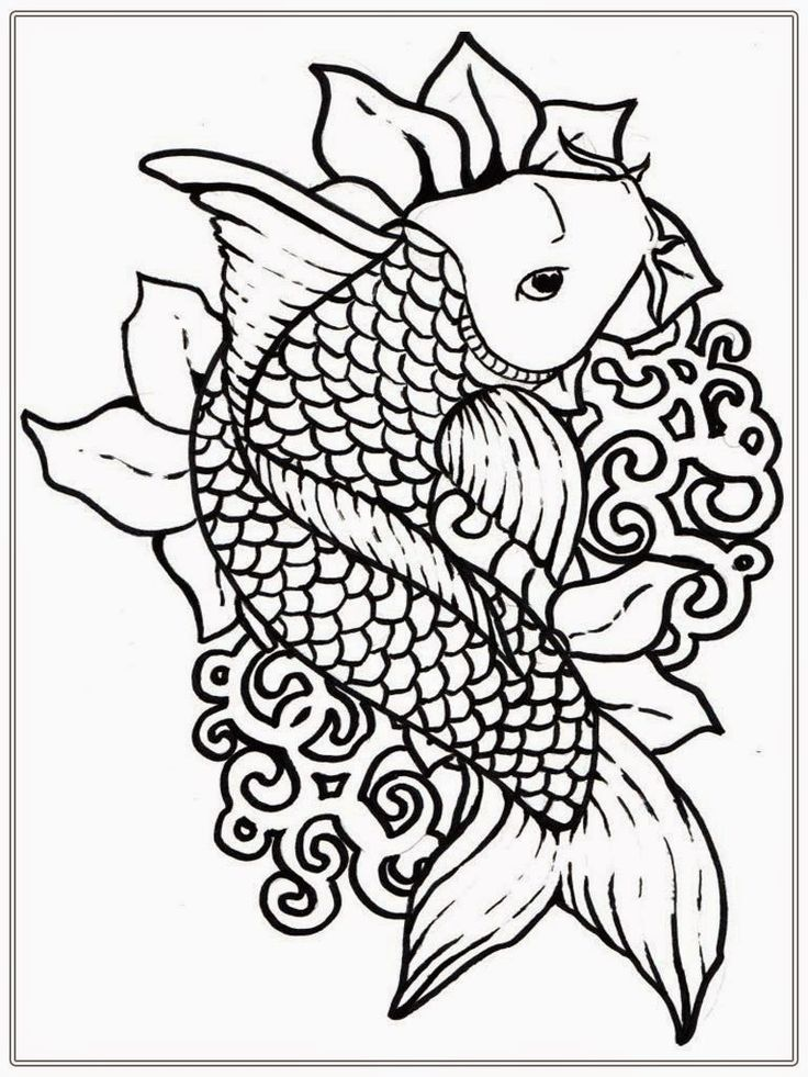 Adult Free Fish Coloring Pages | Fish coloring page ... | free online coloring pages for adults animals