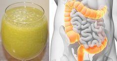 Il colon è l'organo che si occupa di eliminare tutti i residui dei quali il [Leggi Tutto...]