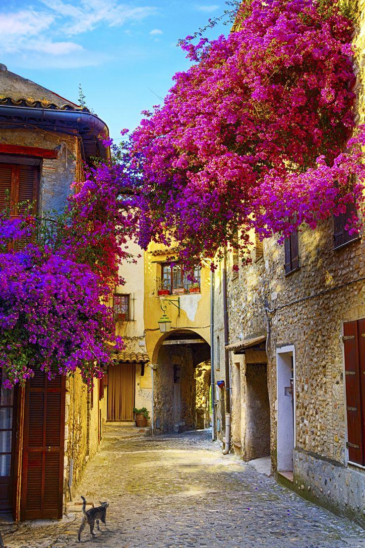 14 märchenhafte Orte, die man tatsächlich besuchen kann: Provence
