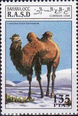 Stamp: Bactrian Camel (Camelus ferus bactrianus) (Cinderellas) (Sahara Occ.) Col:EH 1994085