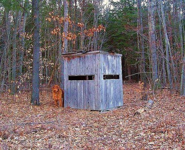 Homemade Deer Box Blinds