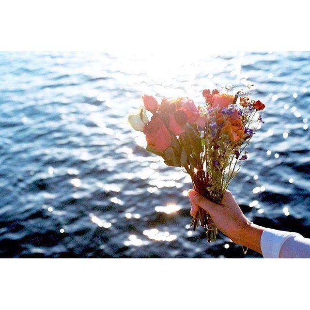 【i___nt】さんのInstagramをピンしています。 《△ ○ □ 子供の頃、 そこらへんに生えている花を あれも!これも!と摘んで 飲み干したペットボトルに水を入れて 部屋においていた。 2、3日たたないうちに 花が折れてそれでも 壁に寄りかかるようにするも すぐにぐったり。 楽しくん摘んでいたはずなのに 最後は悲しくなるのを知って 摘むことをやめた。 今でも花を摘むことに 少し抵抗があるのは この想い出のせいかな。 ・ ・ でも、花が大好きで 大切さを感じれているのは この想い出のおかげかな。 ・ ・ 懐かしい想い出 ✩ ・ ・ #冬ノ海 #海 #sea #撮影会 #photo #写真 #photography #film #filmcamera #フィルムカメラニ恋シテル #ファインダー越しの私の世界 #冬 #フィルムカメラ #ドライフラワー #想い出 #子供の頃 #花 #flower #大切 #自然 #natural #カメラ女子》