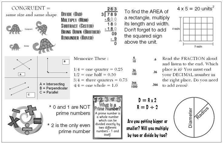 Year 8 maths homework help