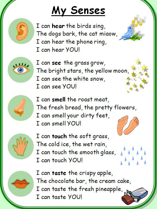 best senses activities ideas senses  five senses poem