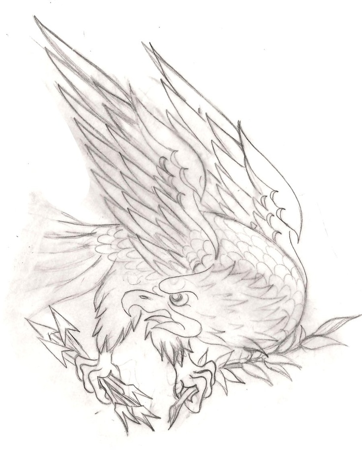 Eagle Tattoo Line Drawing : American traditional eagle sketch tattoo pinterest