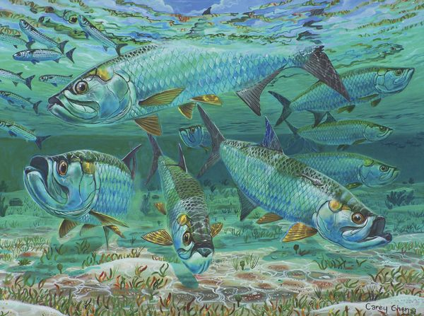 17 best images about tarpon on pinterest fish art for Tarpon fish pictures