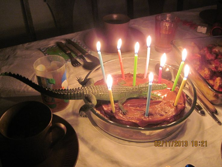 valentines supper, cake w gator