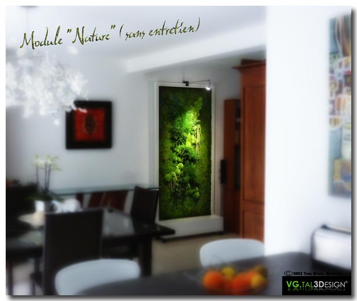Les 91 meilleures images propos de mur v g tal d 39 int rieur sur pinterest - Mur vegetal exterieur sans entretien ...