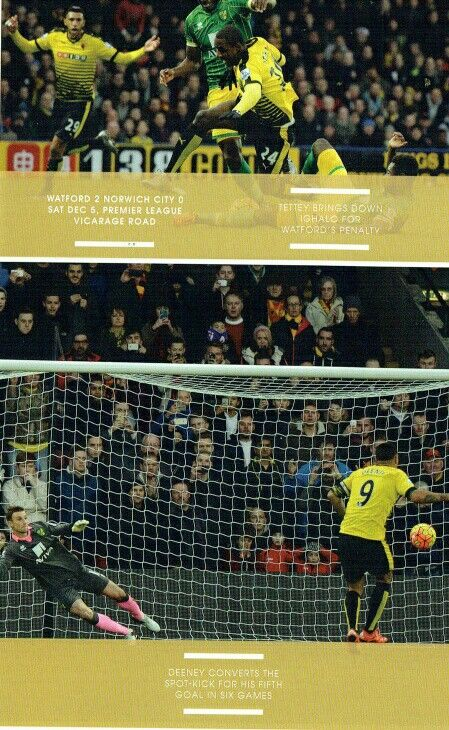 Watford 2 Norwich City 0 in Dec 2015 at Vicarage Road. Action from a deserved Watford win #Prem