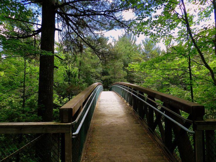 Saviez-vous qu'au cœur de Lanaudière se trouve un parc non seulement reconnu pour sa beauté depuis les années '60, mais représentant aussi la première initiative québécoise ayant pour but de mettre en valeur un site naturel?