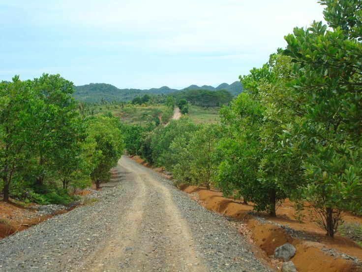 way to Kapihan View Park