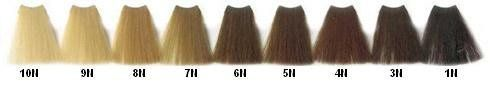 Vivitone Color -7 N Blonde ** Want additional info? Click on the image.