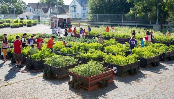 GM Orion aids recycle of old Cadillac plant for urban gardening in Detroit