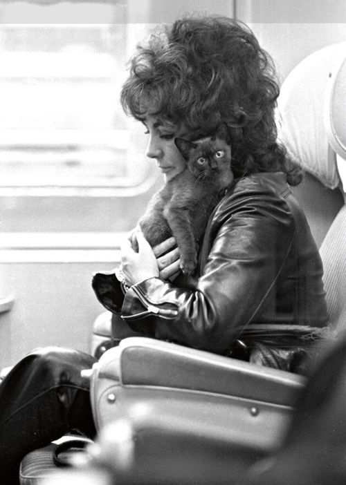 Elisabeth Taylor with her cat in the train, 1971