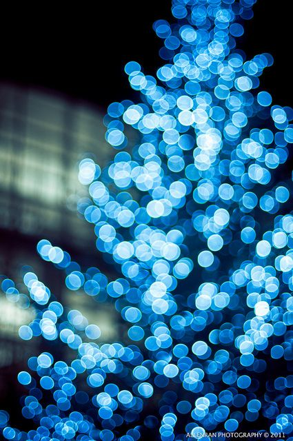 Blue Christmas Tree By allenran 917