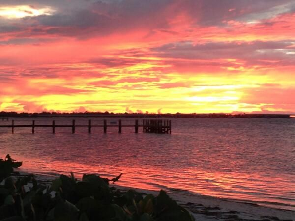 17 best images about fishing on pinterest fishing for Sanibel fishing pier