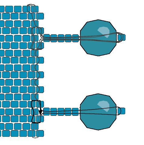 Flat Peyote Clasp - Option 2   Beading Techniques   Fusion Beads