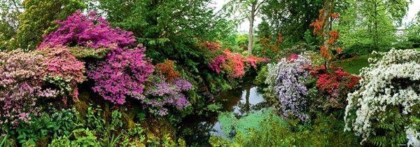Photo Heye 29473 - Humboldt: Bodnant Garden (panorama) - Jigsaw 6000 pieces 1