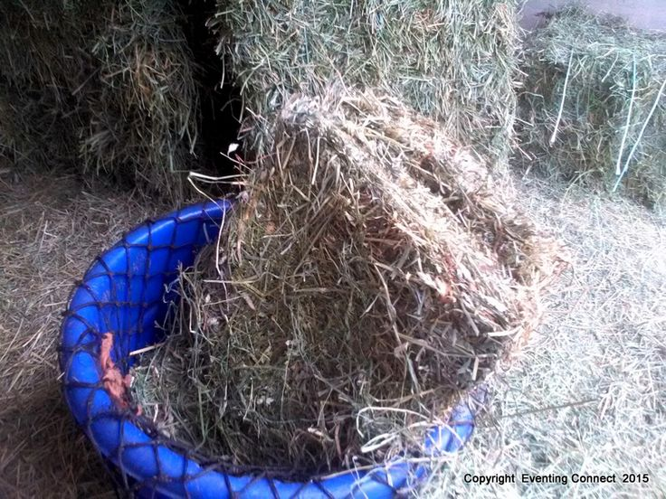 Easy and safe way to fill hay nets and feed from ground