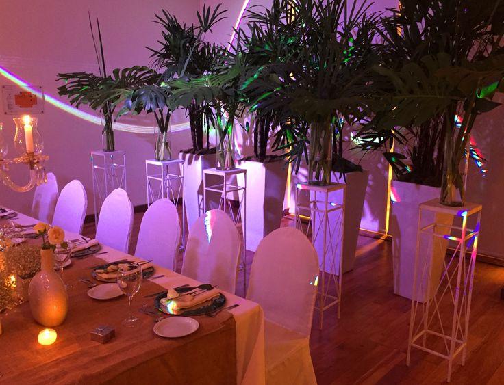 Fondo de mesa principal con palmeras y arreglos de hojas de filodendros