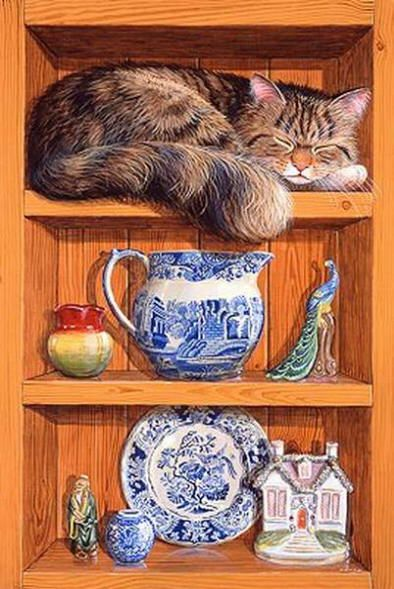 Colin Birchall - Sleeping on the shelf
