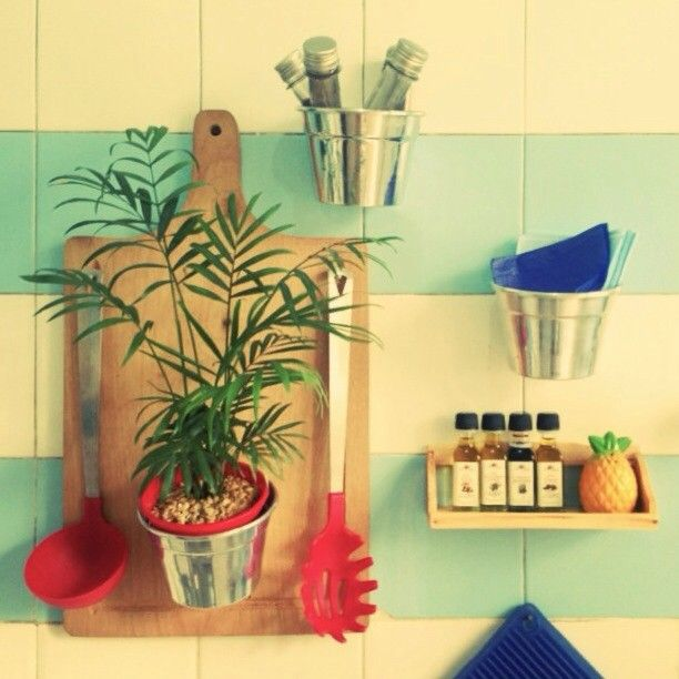 @ribeiro_raphael  Detalhes da cozinha