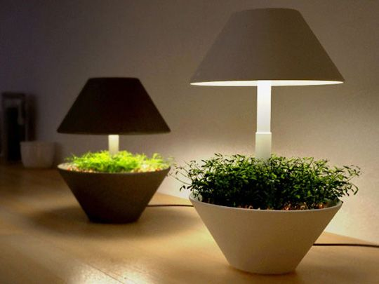 Lightpot. It's a small pot that can be used to grow plants and herbs indoors. The pot uses LED lighting to make sure that the plants are well lit. Plus, you can use the lamp on your desk. The whole thing collapses as well, so that the the light doesn't bother you when you want darkness.