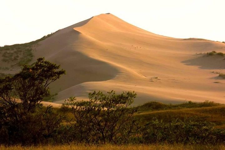 Sarykum is the hottest place in Dagestan. In summer the temperature on the southern slopes can reach +60 degrees Celsius and sometimes it comes up to + 90 Degrees. In such conditions only typically desert inhabitants such as cobras, ground squirrel, and scorpions can survive.    The Sarykum Dune is a natural monument and is protected by the state.