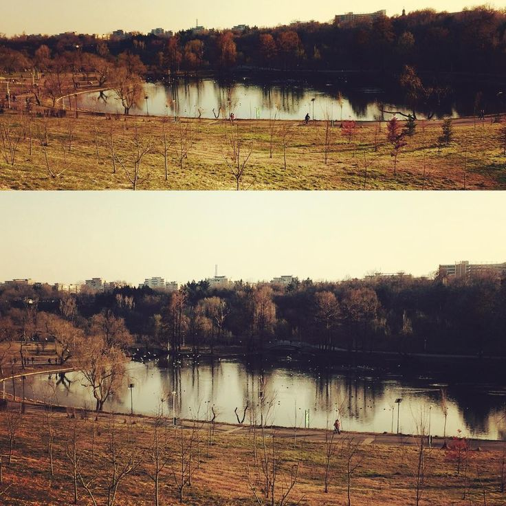 Park Lake! - null
