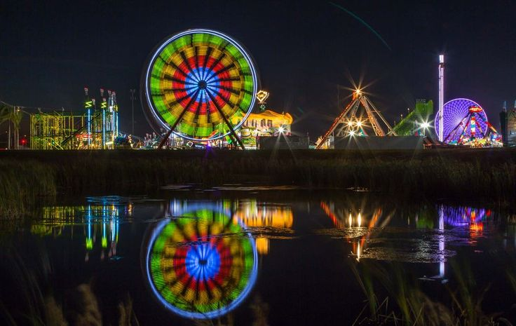 The fair at night in 2014 (Allen Eyestone/The Palm Beach Post)