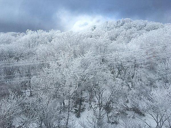 冬の風物詩 蔵王の樹氷見学へ(tenki.jpサプリ 2016年12月28日) - 日本気象協会 tenki.jp