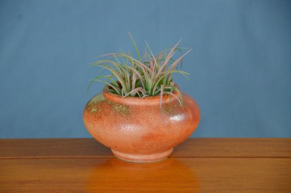 Orange Ceramic Succulent Planter, Hand Thrown Porcelain Pottery, Window, Air Plant, Herb Garden, Pot, Unique Gift, Mom | Caldwell Pottery