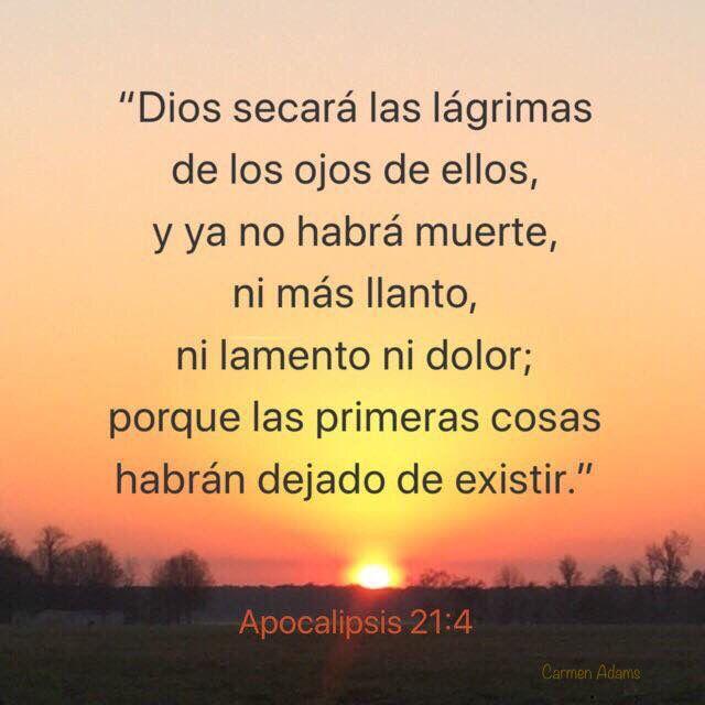 Apocalipsis 21 4 Dios Secará Las Lágrimas Biblia Biblia La Biblia Apocalipsis Biblia Apocalipsis