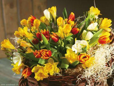 IL #GALATEO DEI #FIORI #PASQUA  Tutti i fiori primaverili sono adatti alla realizzazione di un mazzo da regalare in questa occasione:narcisi, giacinti, tulipani, ranuncoli e fiori di pesco; la scelta è decisamente vasta, il resto è lasciato al gusto personale. Per rendere il pensiero originale si può abbinare l'omaggio floreale a uova di cioccolata, come ricordo della tradizione.